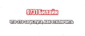 9731 Билайн: что это за услуга, как отключить