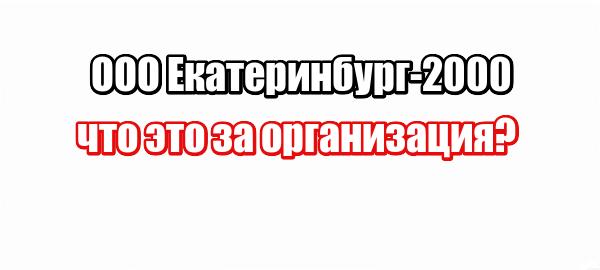 ООО Екатеринбург-2000: что это за организация